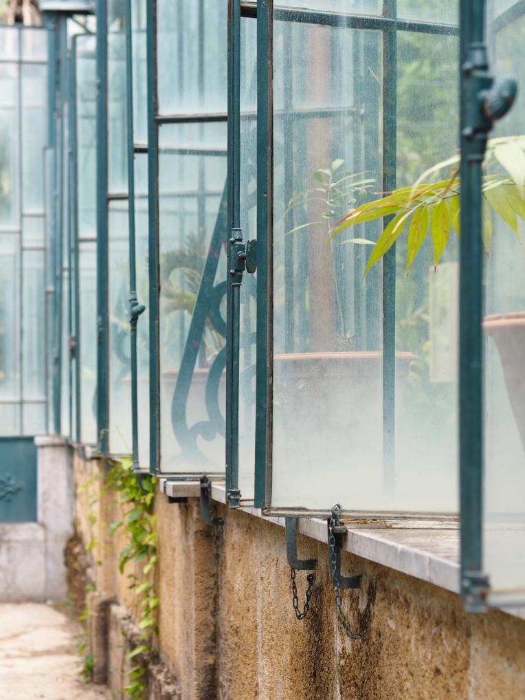 orto-botanico5-taidematkustaja