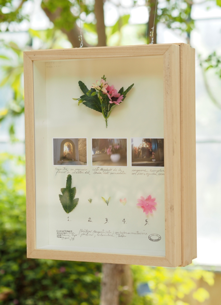 orto-botanico6-taidematkustaja